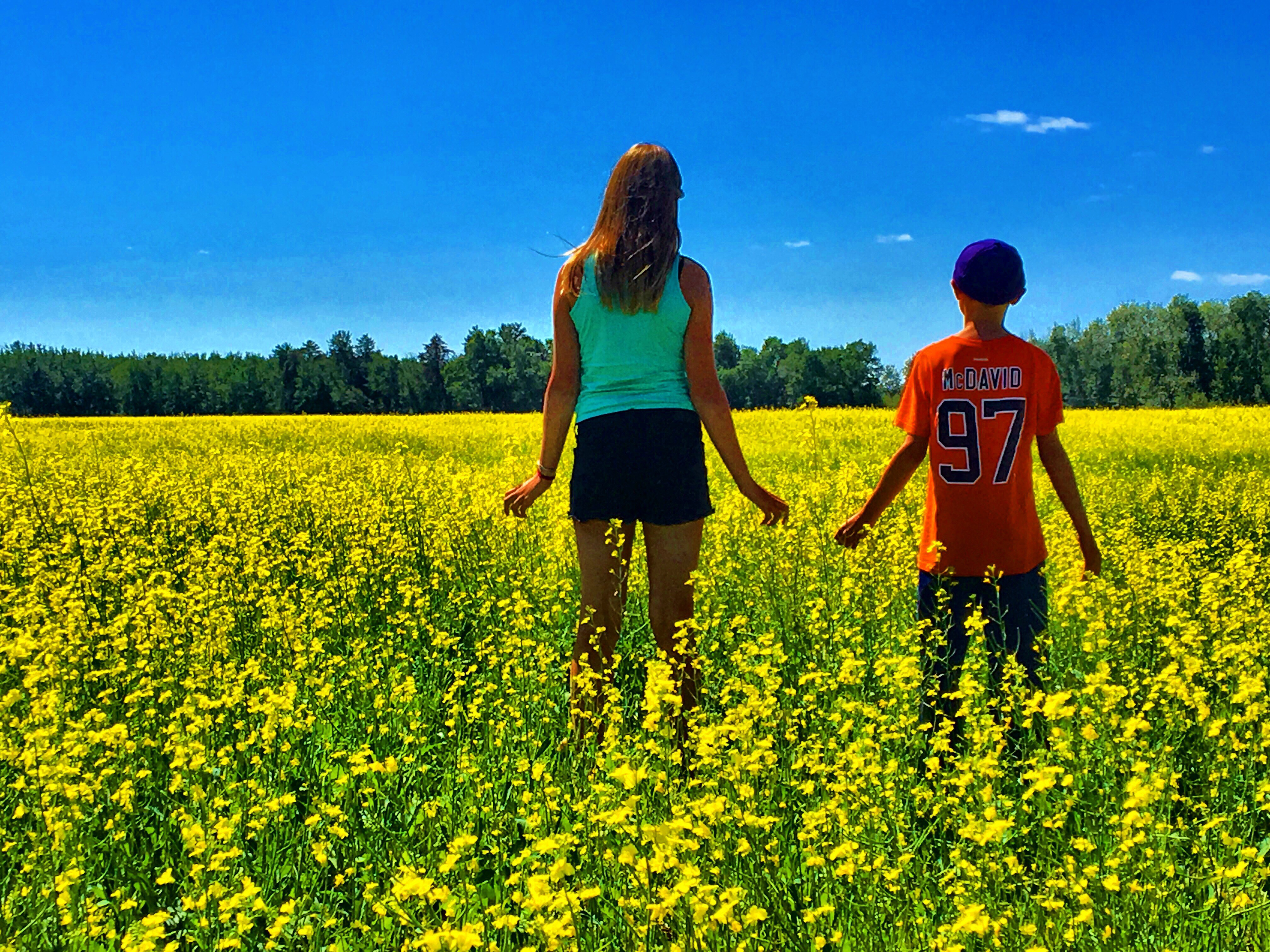 A Mother Allows Her Children To Walk Into A Gmo Field Sprayed With